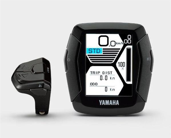 Yamaha Display Type C